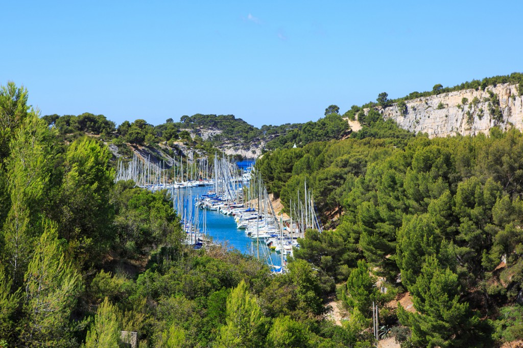 Port Pin Cassis